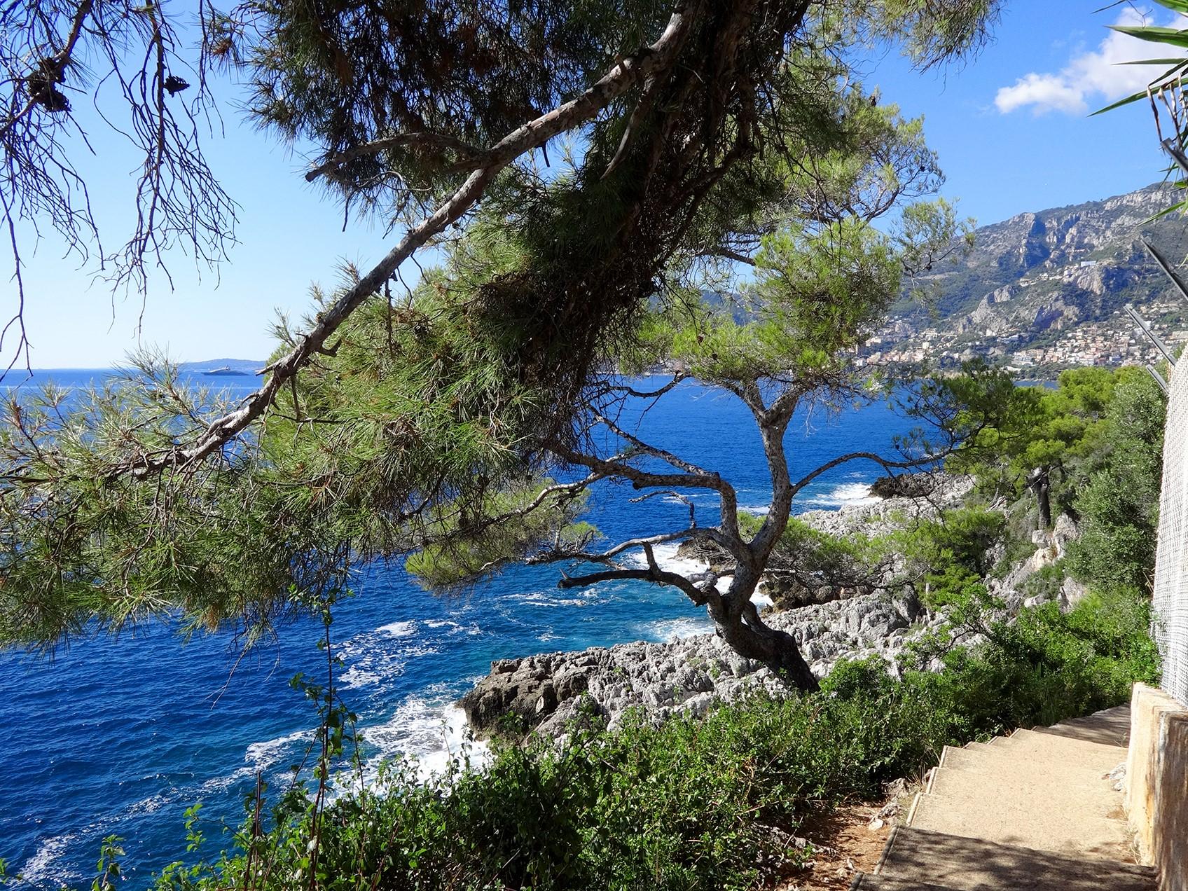 Je kunt een prachtige wandeling maken langs de grillige kust van Cap Martin